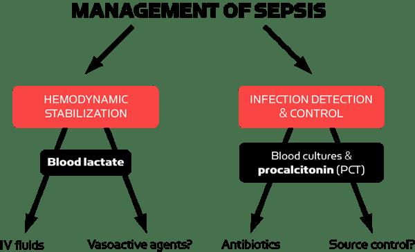 Tratamiento de análisis de gases en sangre